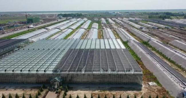 乾安县博瑞生态农业-国家首批农村产业发展示范园