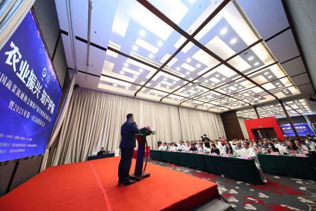 中国蔬菜流通协会知识产权专业委员会成立大会 暨2021年第一次会员大会成功举办