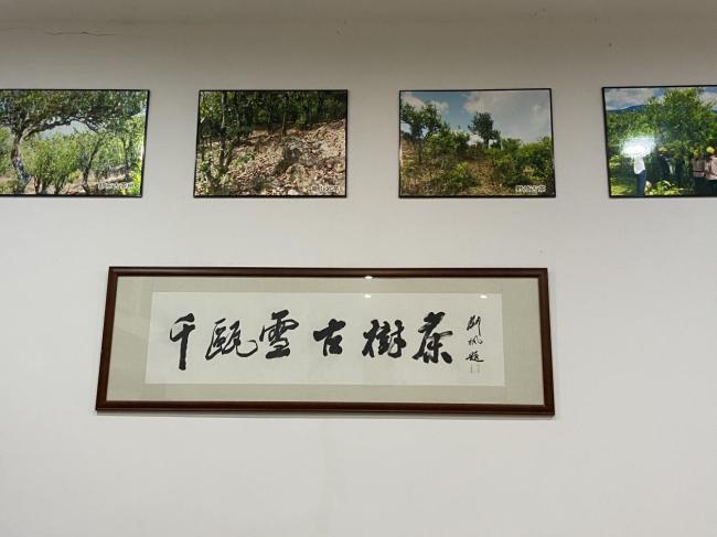 庆国庆 品佳茗 读诗人俞强《千瓯雪赋》